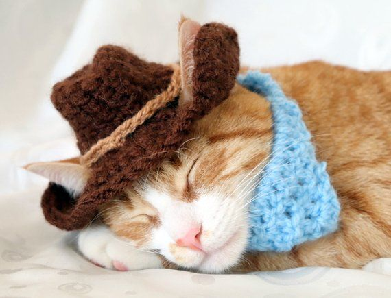 Cowboy Hat for Cats , Bandana Add On Option, Cowboy