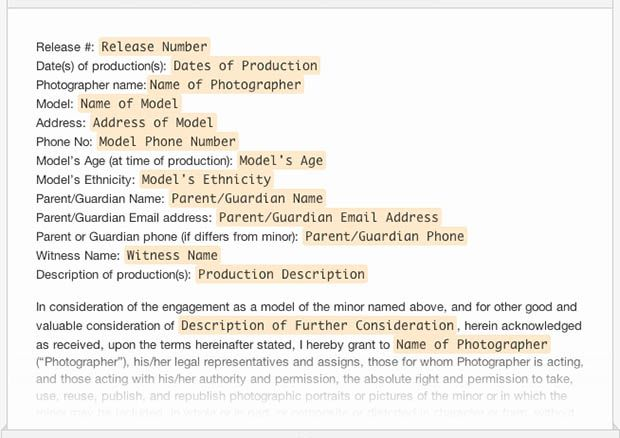 A Collection of Free Sample Legal Forms for Photographers - sample video release form
