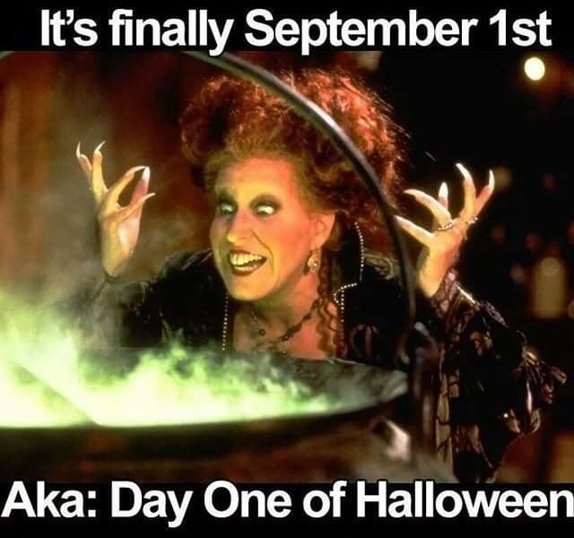 Pin by Tanya Rapalee on This is Halloween!! in 2020 ...