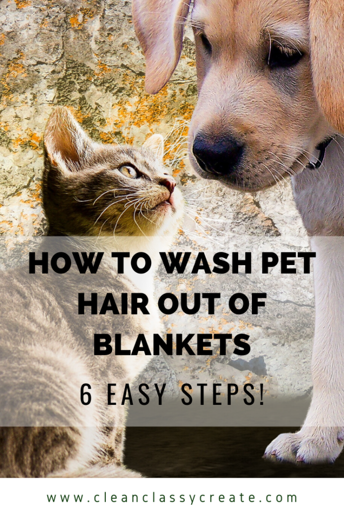 How To Wash Pet Hair Out Of Blankets 6 Easy Steps Clean Classy Cleaning Pet Hair Pets Pet Hair