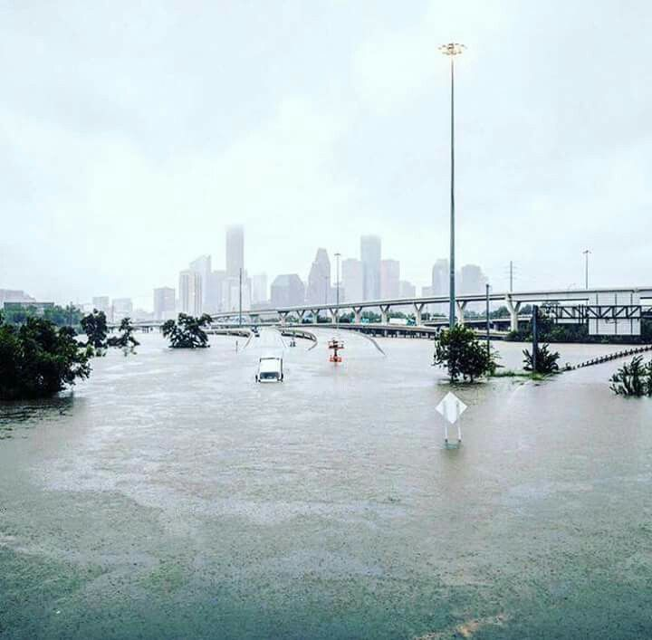 817 hurricane harvey houston flood insurance flood