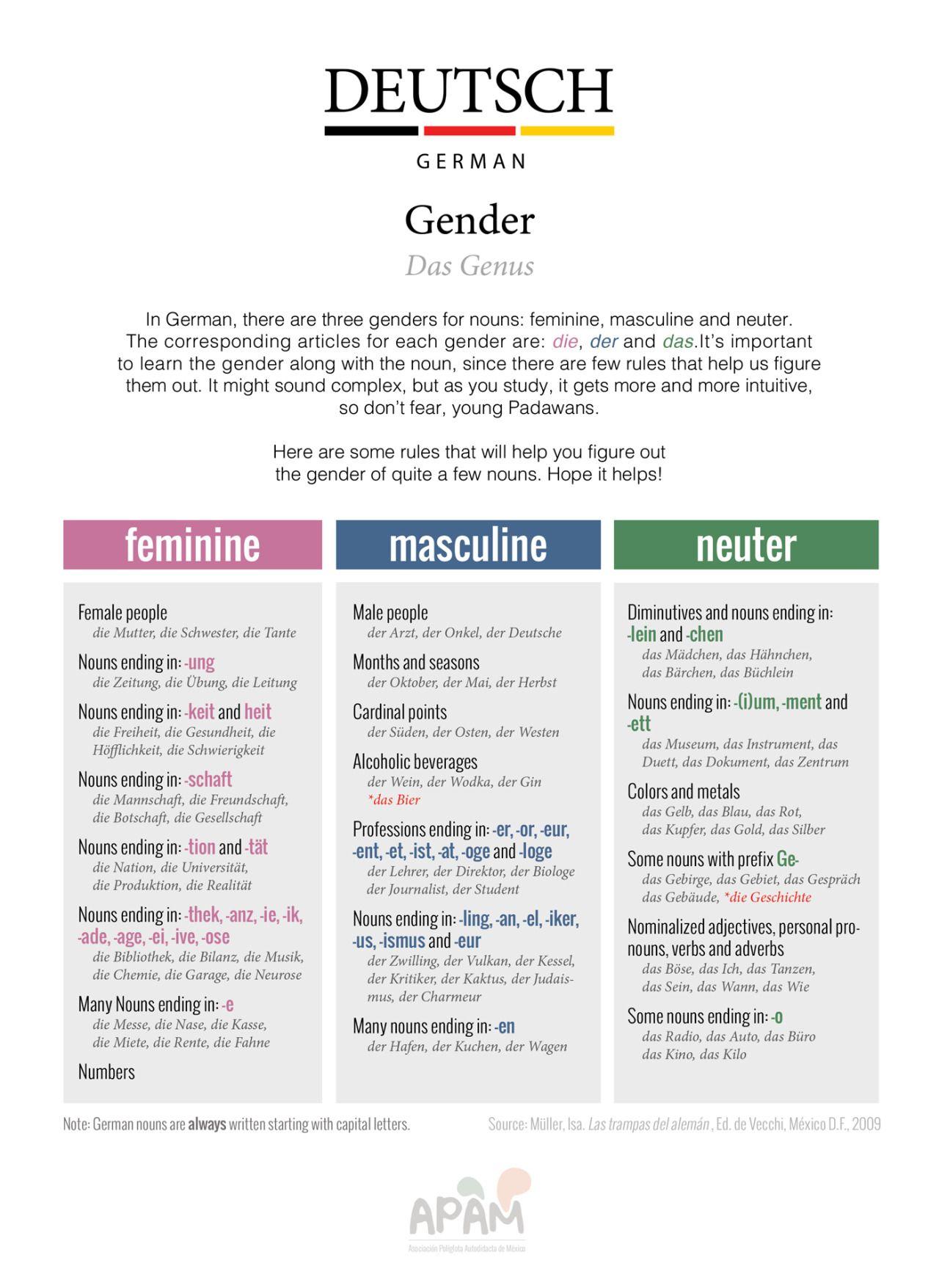 Romance Language Learning — apamexico: Gender of German nouns! Download