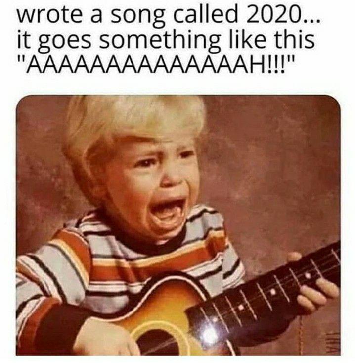 Wrote A Song Called 2020 It Goes Something Like This Aaaaaaaaaaaaaah Really Funny Songs Humor