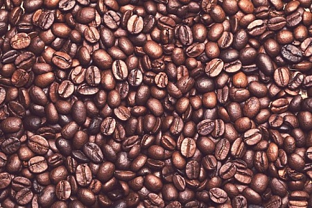Newest Photos Our Newest Free Stock Images Freerange Stock Stock Images Free Beans Image