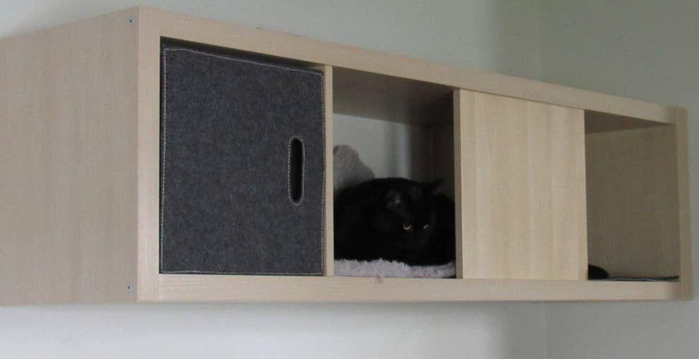 17 Clever Ikea Hacks That Will Make You And Your Cat Very Happy Katzen Wand Ikea Katzen