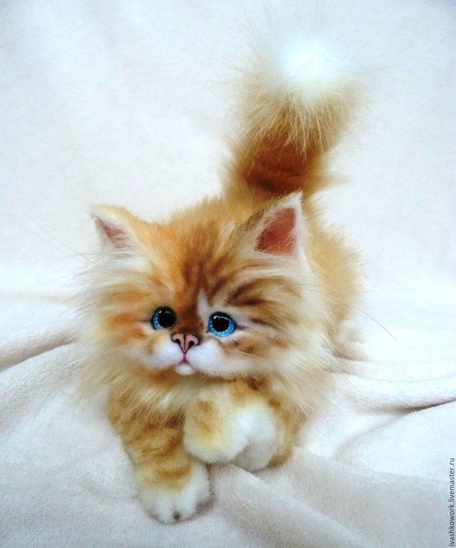 Купить Котик Тимошка) - рыжий кот, котенок, кот, котик ...