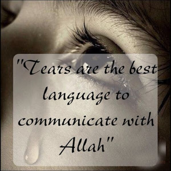 Tears Are The Best... #Quotes #Daily #Famous #Inspiration