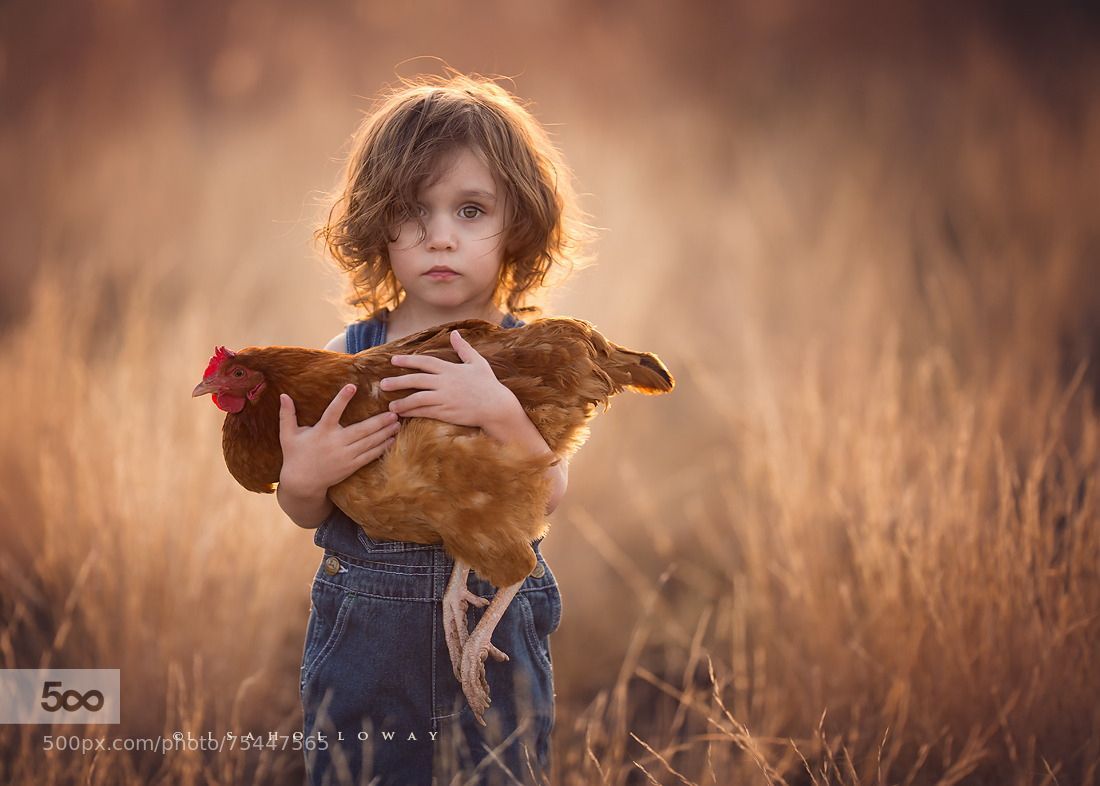 Photograph Elliott & His Hen by Lisa Holloway on 500px