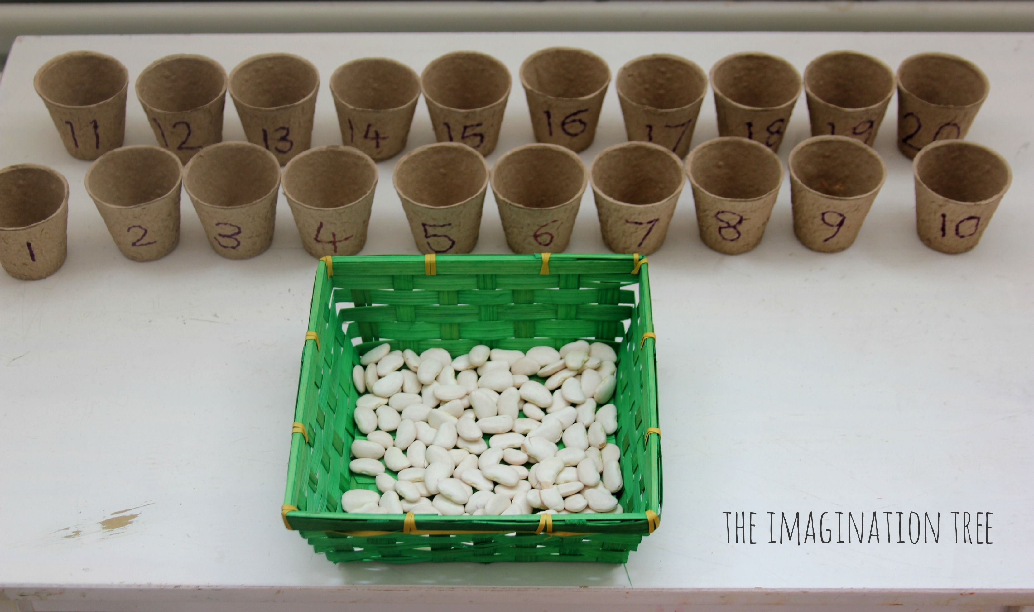 Beans And Flower Pots Counting Activity With Images