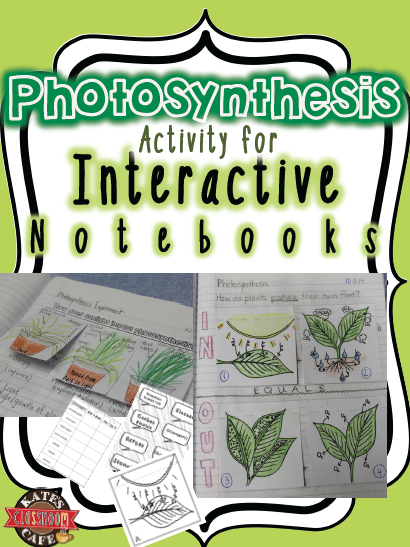 Photosynthesis for interactive notebooks photosynthesis diagram photosynthesis interactive notebook diagrams fun for students to complete color and practice with ccuart Image collections