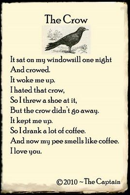 """crow poems  captain poetry """"the crow""""the captain"""