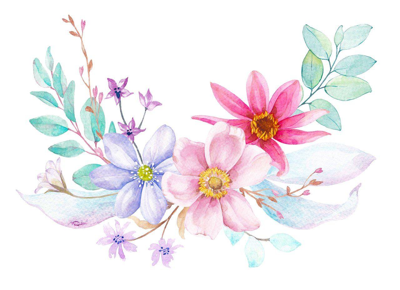 Pin De Marina ♥♥♥ Em Flores V