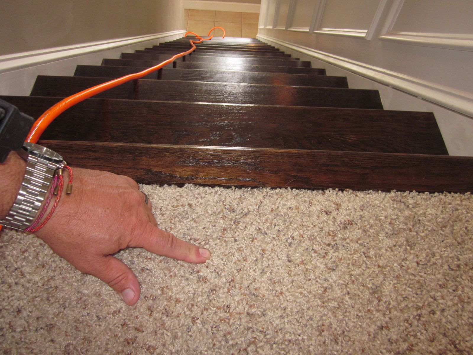Carpeted Top Step Wood Rest Of Staircase For The Home