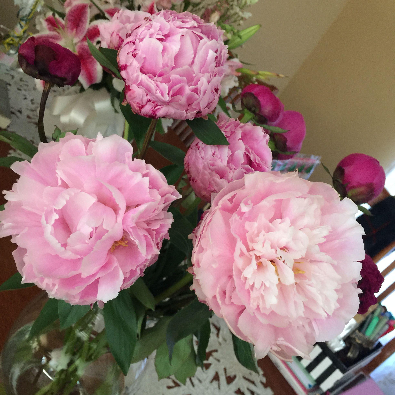 Pin By Maria Monroy On In Bloom Floral Wreath Bloom Flowers