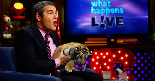 """Andy Cohen host of  """"Watch What Happens Live""""."""