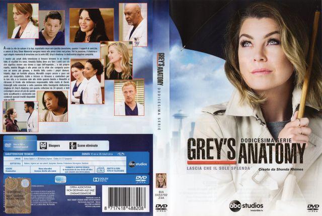 Grey\'s anatomy - 12^ serie - lascia che Il sole splenda - - Serie tv ...