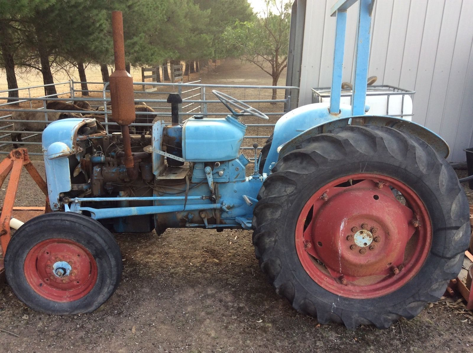 Ford Dexta Tractor : Fordson dexta tractor price reduced in vic ebay