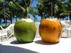 TU SALUD: Propiedades y beneficios del Agua de Coco