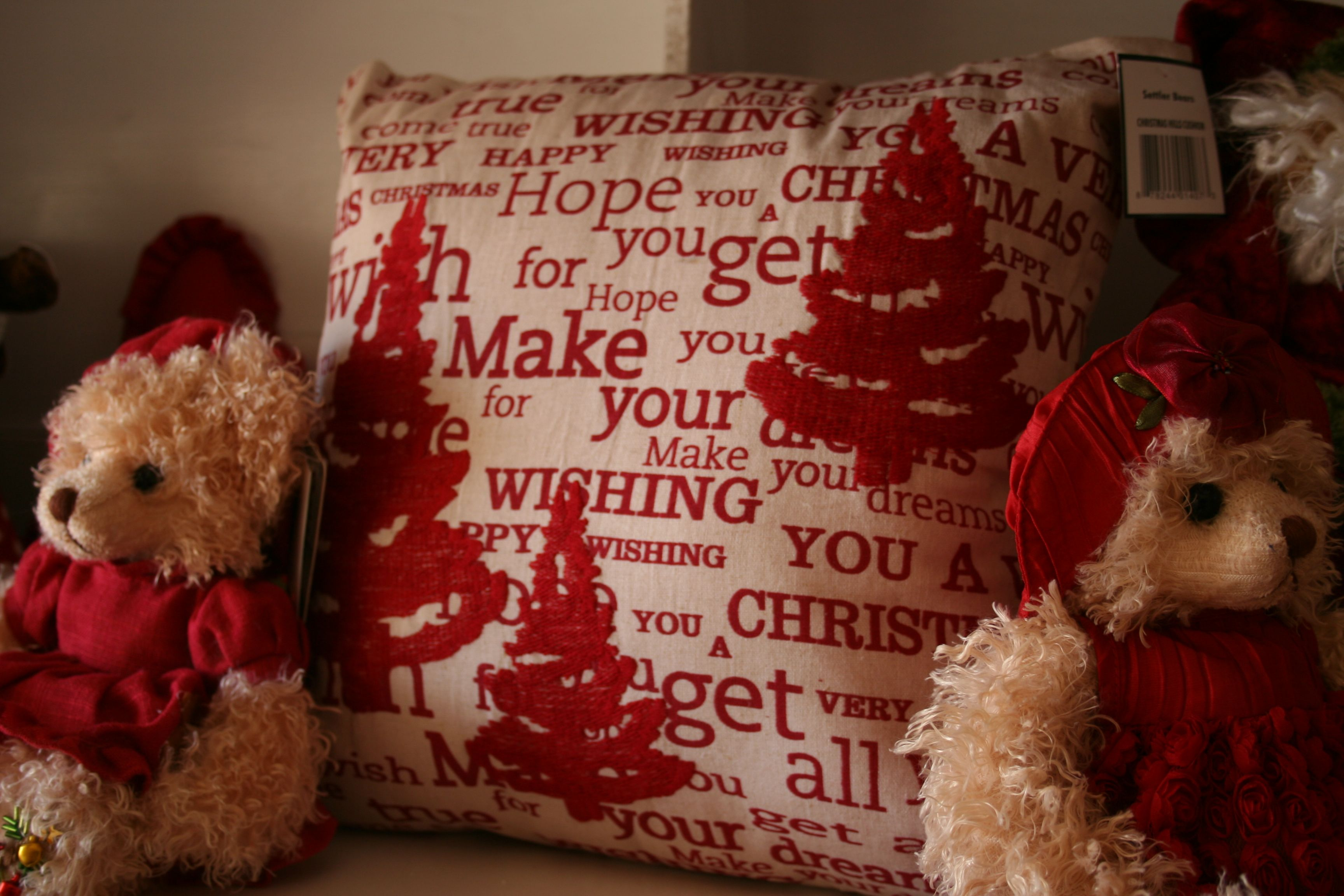 CHRISTMAS CUSHION. What a great way to say it all. A