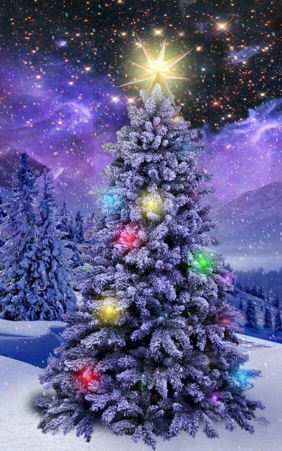 A Beautiful Christmas Tree Christmas Wallpaper Android Christmas Wallpaper Free Christmas Wallpaper Beautiful free christmas wallpaper for