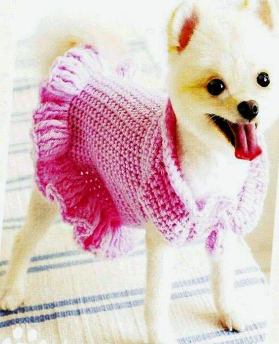 Ruffled Dog Sweater Dress 7 Dog Patterns Croch