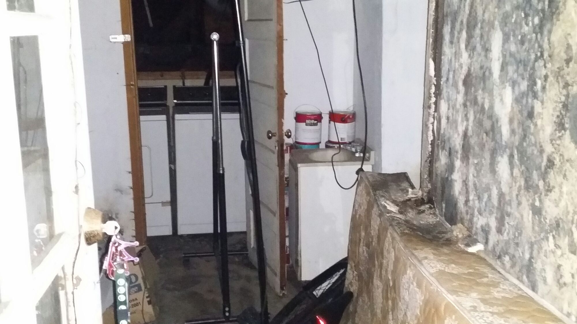 Mold Inspection Professional Mold Inspection Is Important