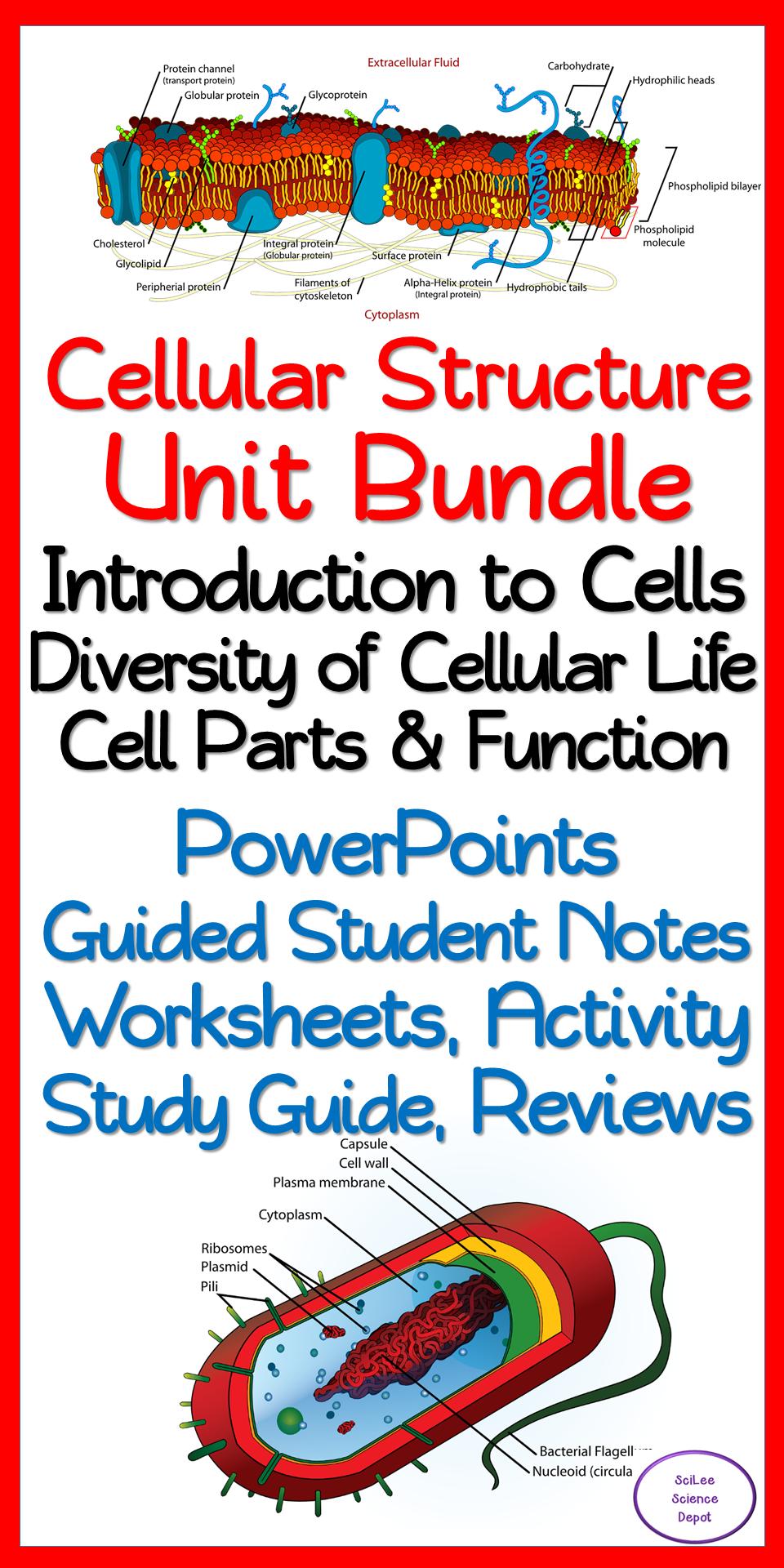 Cellular Structure & Function 10 Day NO PREP Unit Bundle