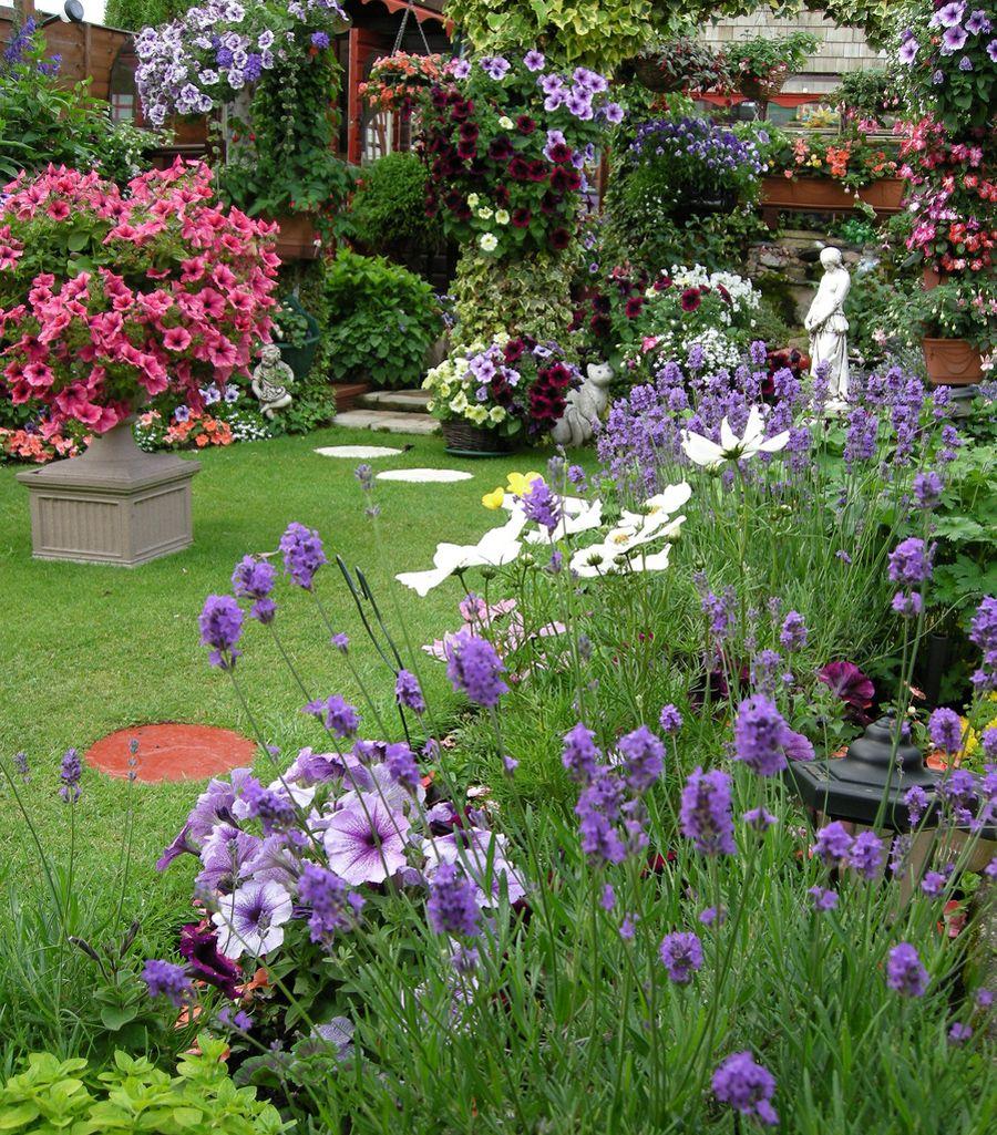 Private Small Garden Design: Perennial Garden. Annuals. Container Garden. Hanging