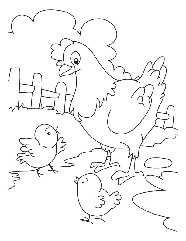 Hen And Chicken Coloring Page