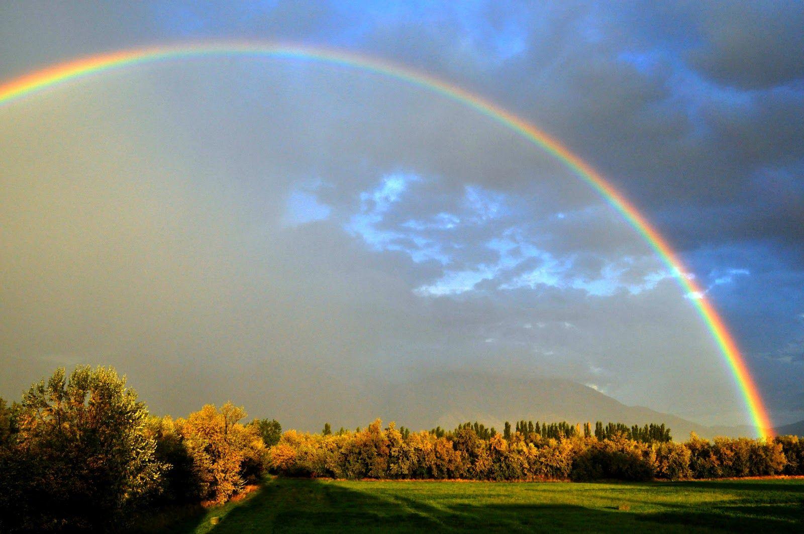 Rainbows With Images Rainbow Sky Rainbow Sky