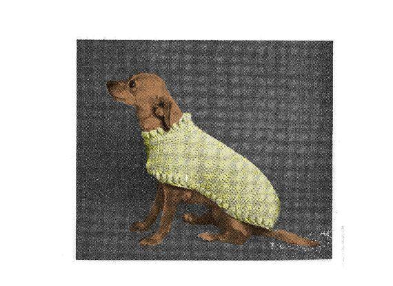 PDF Vintage Cat or Dog Crochet Sweater Coat Pattern C19 PDF #dogcrochetedsweaters