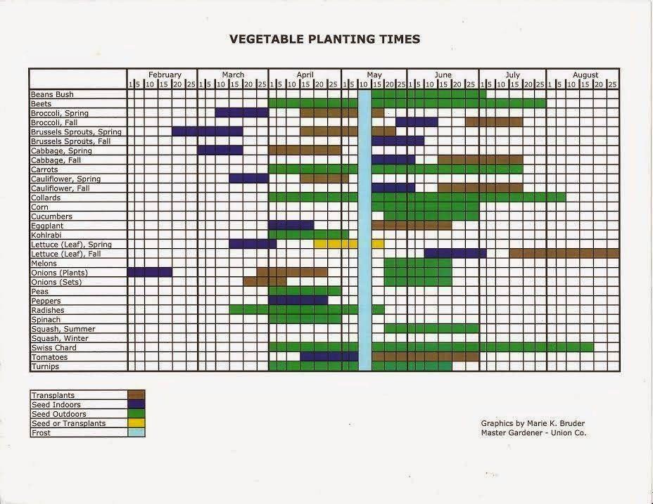 #whagardening #gardening #suburban #guide #handy #plant #when #grow #know #your #this #use #own #wha #toGrow Your Own: Suburban Gardening Use this handy guide to know when to plant wha...#gardeningGrow Your Own: Suburban Gardening Use this handy guide to know when to plant wha...#gardening  Aprenda como fazer uma HORTA VERTICAL com tubo de PVC, super fácil. Para ver mais tutoriais como esse acesse: /paulobiacchi ou clique na foto.  This is also a great idea for starting seeds as the moist...