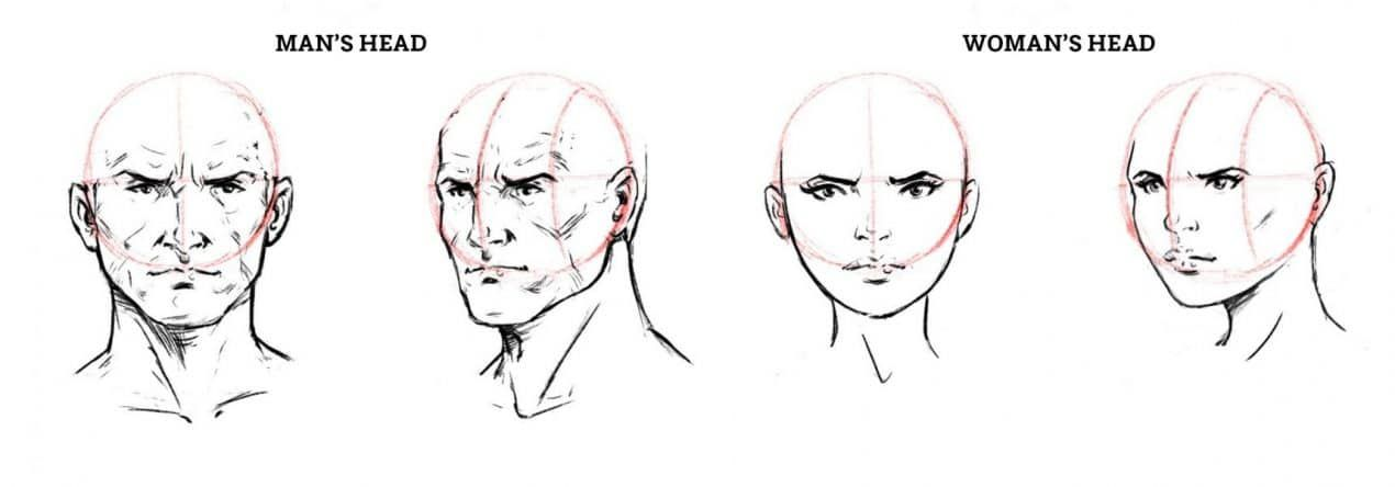 How To Draw A Face Drawing The Male And Female Head Front And 3 4 Face Drawing Female Head Drawings