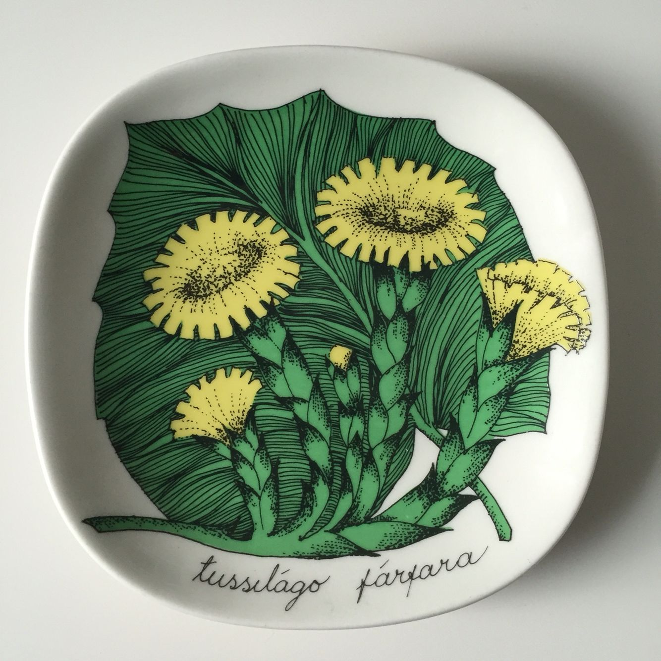"""Arabia of finland Botanica small wall hanging from Esteri Tomula Made in Finland small plate Tussilago Farfara Collective plate A collective Botanica plate from Arabia, Tussilago Farfara, designed by Esteri Tomula from the 80s. I have another one Rosa Baccara, please check my list. Good condition, please see the pictures for detail. Size: 12.1cm x 12.1cm (4.76"""" x 4.76"""")"""