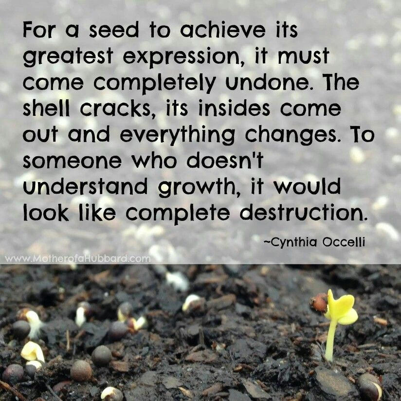 Growth Everything changes, Inspirational quotes