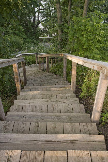 rustic garden railing - Google Search   Garden Designs ...