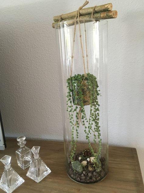 Hoge glazen vaas met erwtenplantje - Dekorieren - #Dekorieren #erwtenplantje #glazen #Hoge #met #vaas #bodenvasedekorieren