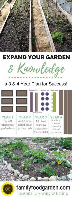 3 Year Plan to Expand your Garden & Knowledge