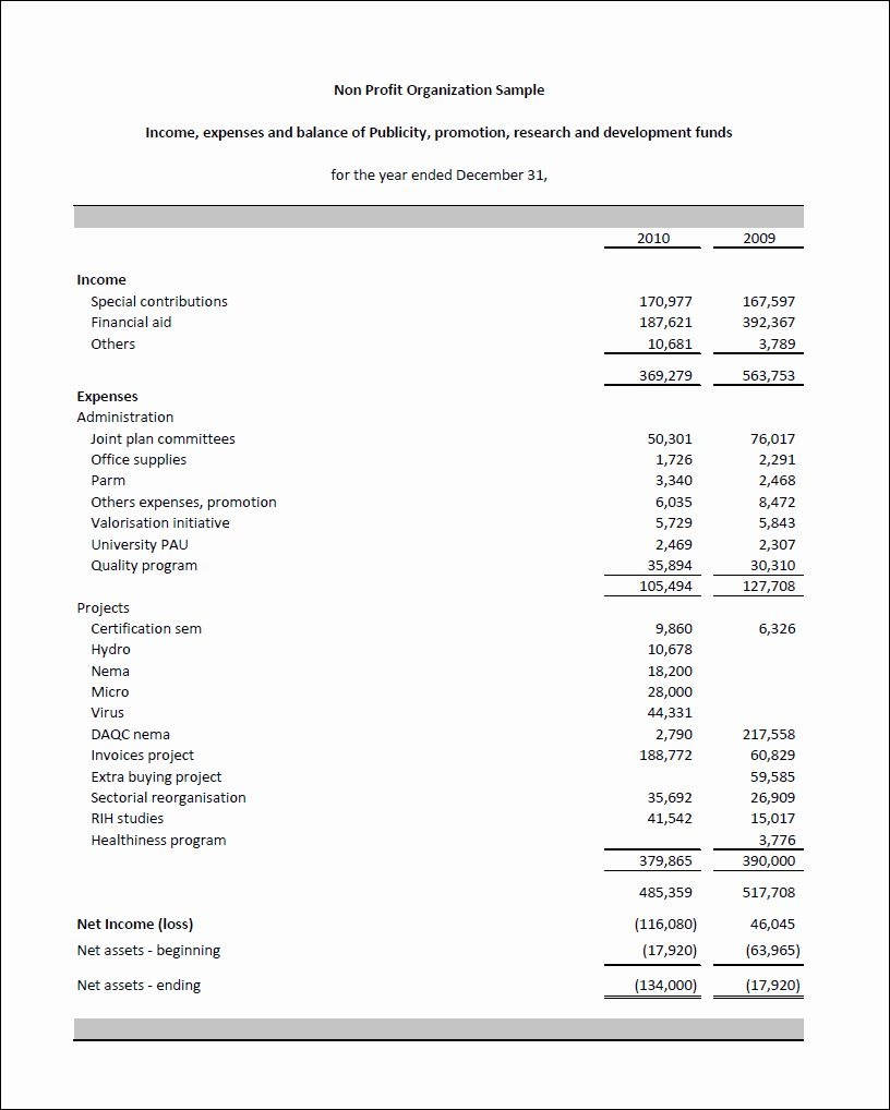 50 Non Profit Financial Statement Template in 2020