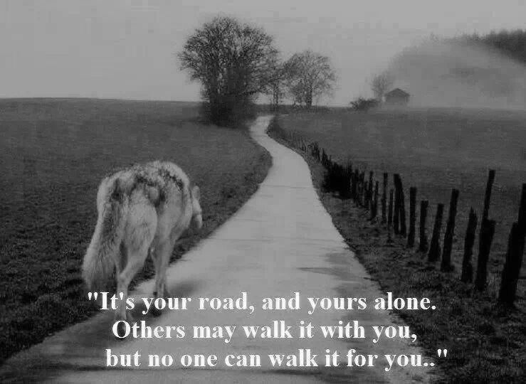 Lonely Road To Success Quotes