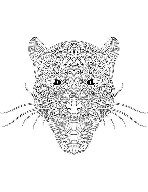 Leopard Coloring Page For Calm Relaxation And Stress Relief
