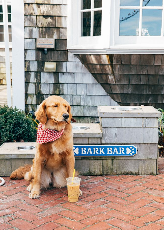 Sarah Vickers Adventures In New England Living Classic Fashion