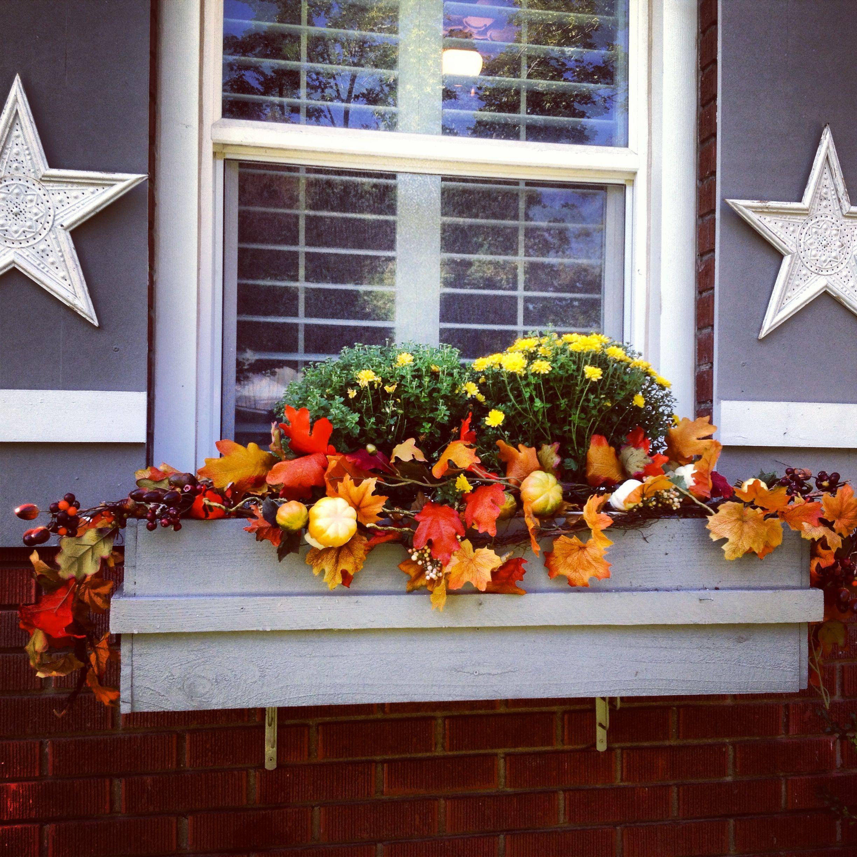 Fall window box Urbanity Interiors Fall windows, Fall