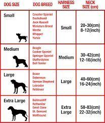Dog Collar Size Chart Cm Google Search Dog Collar Size