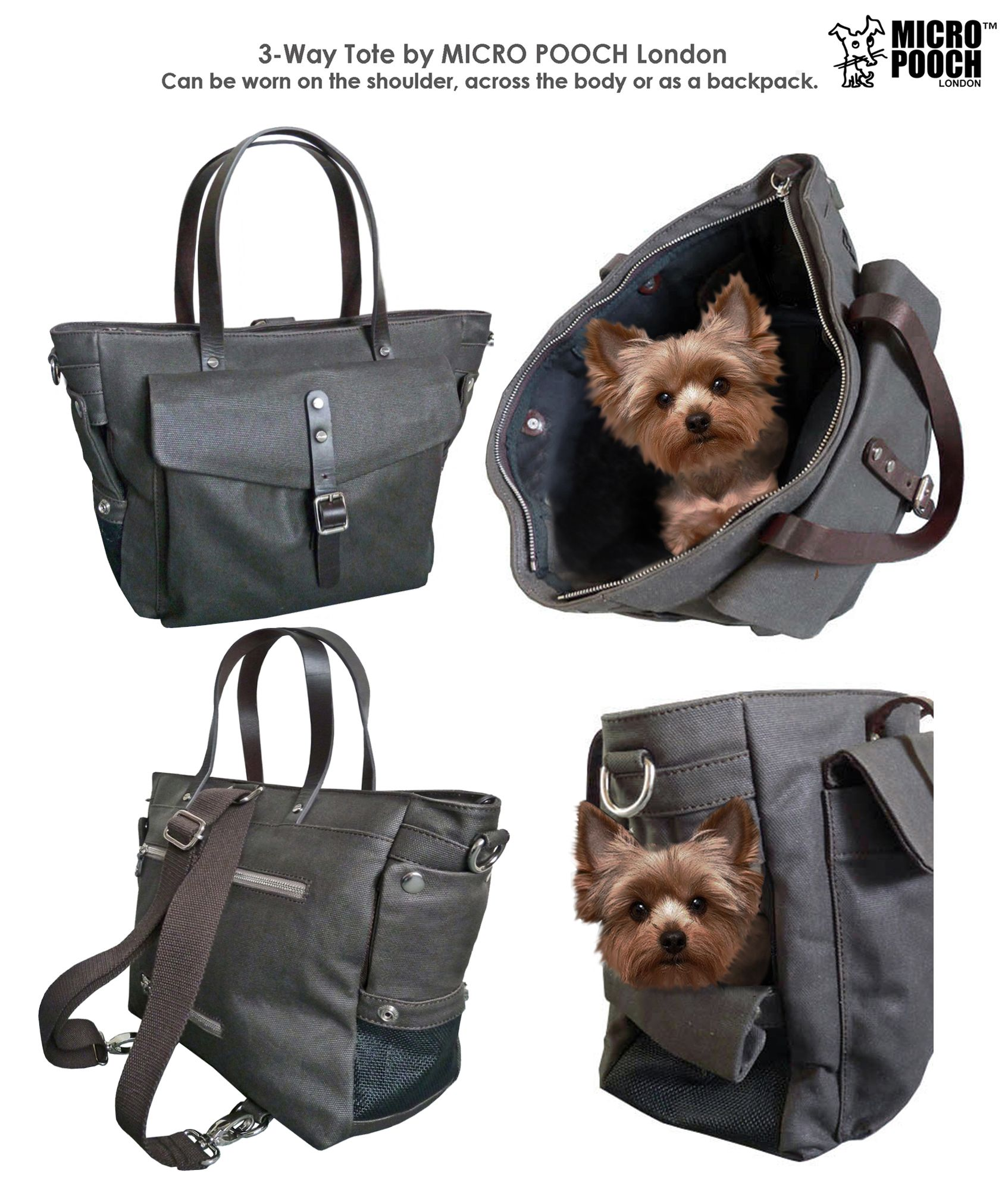 Mini Yorkie In Dog Bag By Micro Pooch Micro Yorkie Pinterest