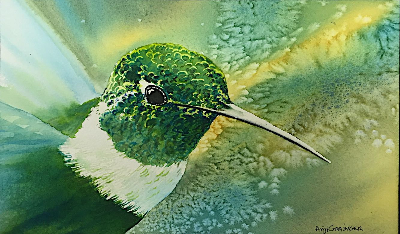 Fun small hummingbird study