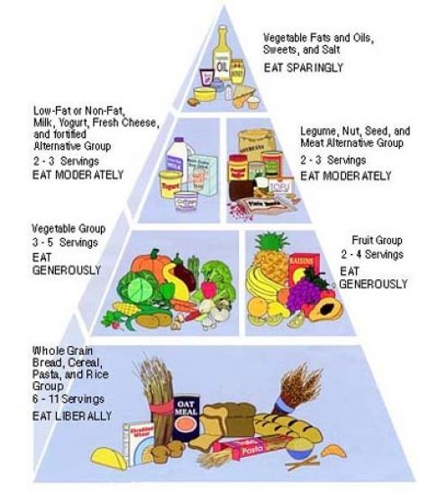 Fat burning lean muscle diet picture 8