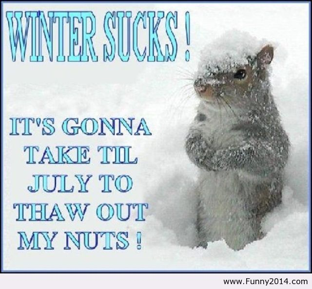 Pictures And Quotes Of Cold Whether Hate Cold Weather Quotes