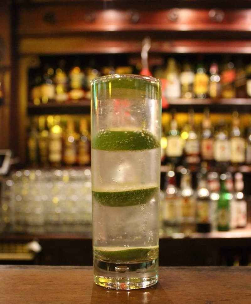 Gin And Tonic Recipe in 2020 Best gin and tonic, Gin