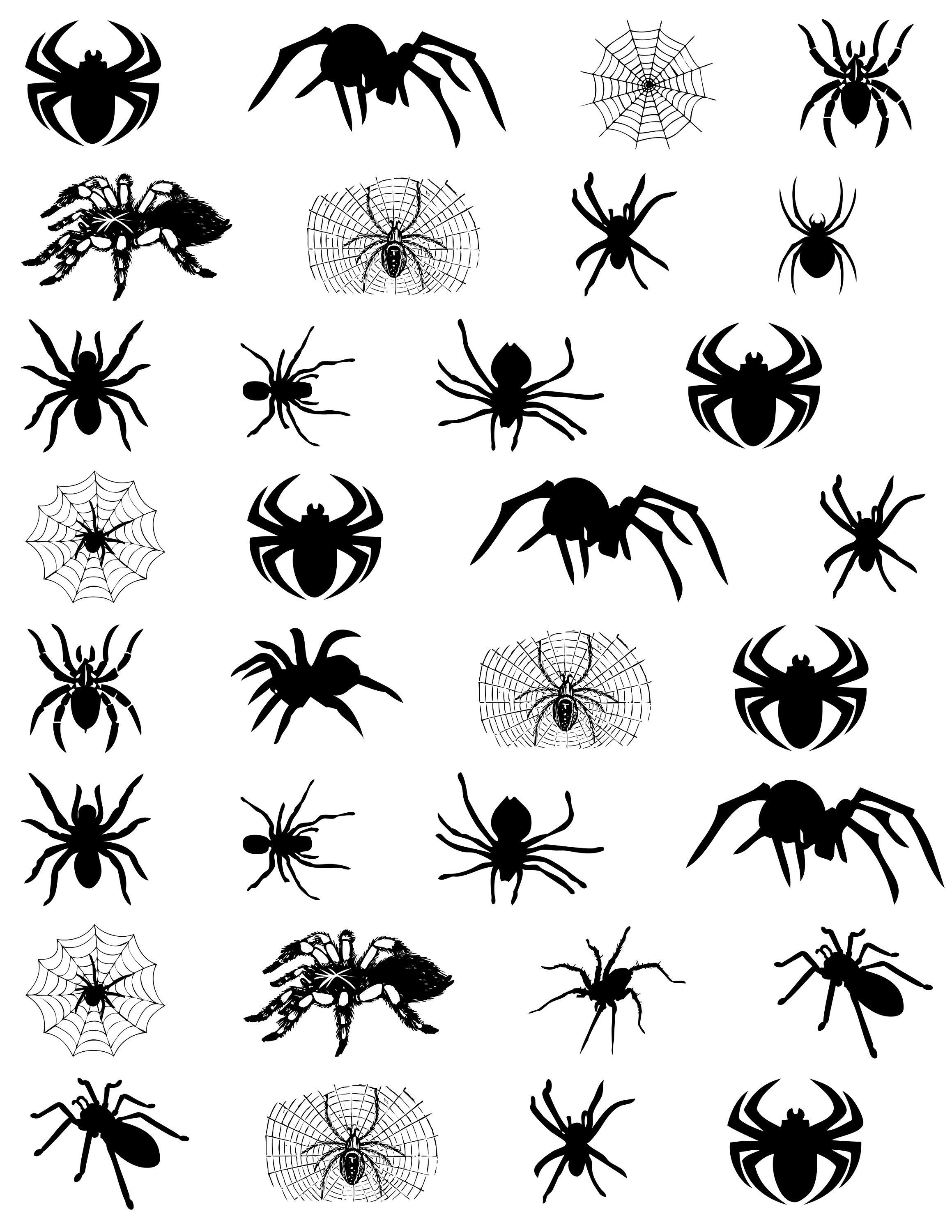 Photo of 32 Kids Spider Temporary Tattoos Birthday Party Favors Stickers Creepy Halloween Waterproof Tattoo Fake Body Art